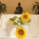 Buddhas and Bodhisattvas