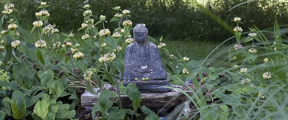 Gaia House Garden.