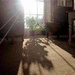Gaia House Interior lounge