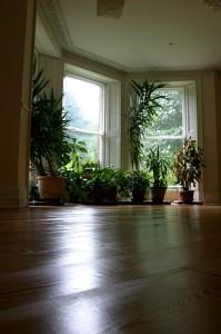 Meditation at Gaia House - walking room